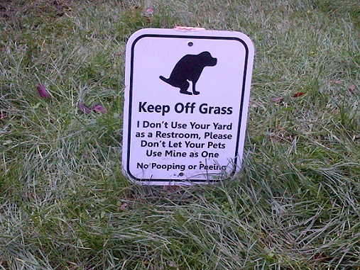 How To Keep Dogs And Cats Off Your Yard